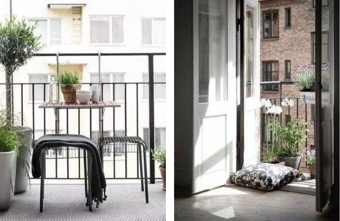 plantas para decorar tu mini balcón